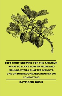 Cover Soft Fruit Growing for the Amateur - What to Plant, How to Prune and Manure, with a Chapter on Nuts, One on Mushrooms and Another on Composting
