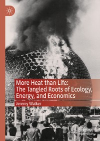 Cover More Heat than Life: The Tangled Roots of Ecology, Energy, and Economics