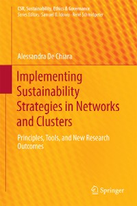 Cover Implementing Sustainability Strategies in Networks and Clusters