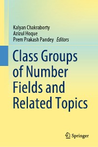 Cover Class Groups of Number Fields and Related Topics