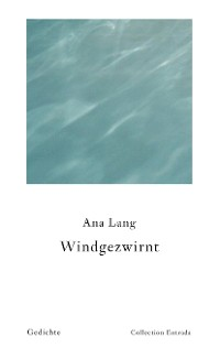 Cover Windgezwirnt