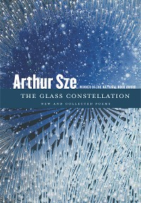 Cover The Glass Constellation
