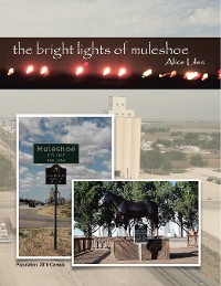 Cover The Bright Lights of Muleshoe