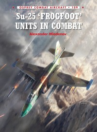 Cover Su-25 'Frogfoot' Units In Combat