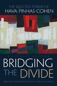 Cover Bridging the Divide