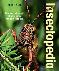 Cover Insectopedia - The secret world of southern African insects