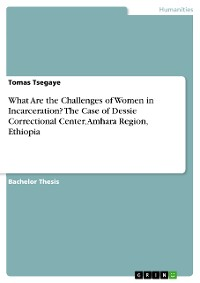 Cover What Are the Challenges of Women in Incarceration? The Case of Dessie Correctional Center, Amhara Region, Ethiopia
