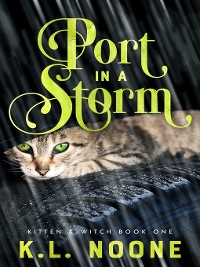 Cover Port in the Storm