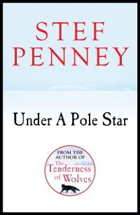 Cover Under a Pole Star