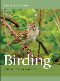 Cover Birding the Hudson Valley