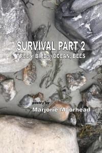 Cover Survival Part 2