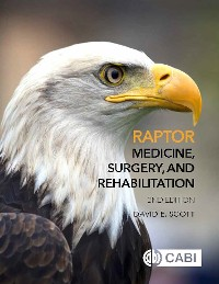 Cover Raptor Medicine, Surgery, and Rehabilitation