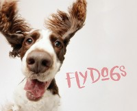Cover Flydogs
