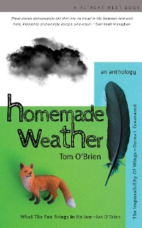 Cover Homemade Weather
