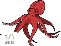 Cover il volo del calamaro
