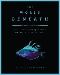 Cover The World Beneath