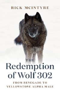 Cover The Redemption of Wolf 302
