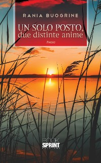 Cover Un solo posto, due distinte anime
