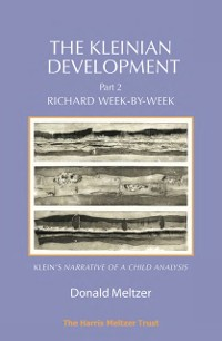 Cover Kleinian Development - Part II