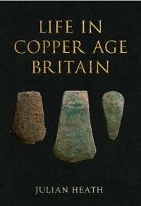 Cover Life in Copper Age Britain