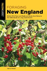 Cover Foraging New England