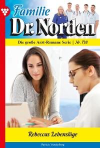Cover Familie Dr. Norden 738 – Arztroman