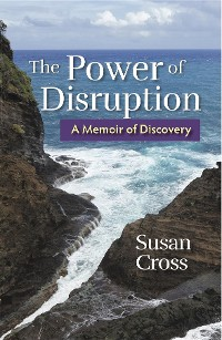 Cover The Power of Disruption