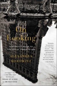 Cover On Looking