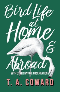 Cover Bird Life at Home and Abroad - With Other Nature Observations