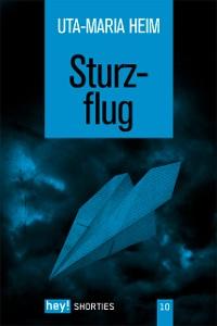 Cover Sturzflug