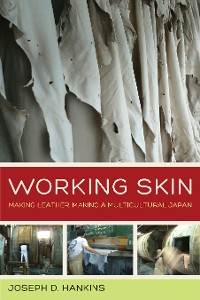 Cover Working Skin
