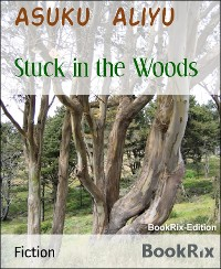 Cover Stuck in the Woods