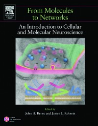 Cover From Molecules to Networks