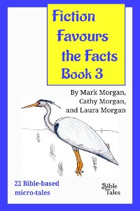 Cover Fiction Favours the Facts - Book 3
