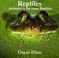 Cover Reptiles (animals in the class Reptilia)