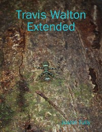 Cover Travis Walton Extended