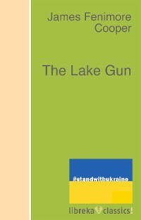Cover The Lake Gun
