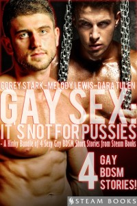 Cover Gay Sex: It's Not For Pussies - A Kinky Bundle of 4 Sexy Gay BDSM Short Stories from Steam Books