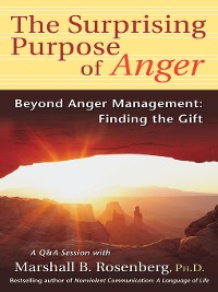 Cover The Surprising Purpose of Anger:  Beyond Anger Management