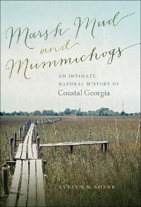 Cover Marsh Mud and Mummichogs