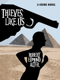 Cover Thieves Like Us