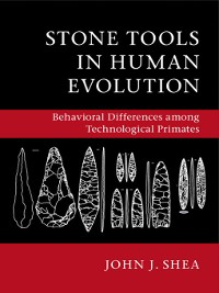 Cover Stone Tools in Human Evolution