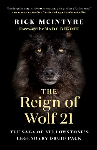 Cover The Reign of Wolf 21