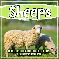 Cover Sheeps: Discover Pictures and Facts About Sheeps! A Children's Sheeps Book