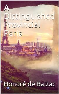 Cover A Distinguished Provincial at Paris
