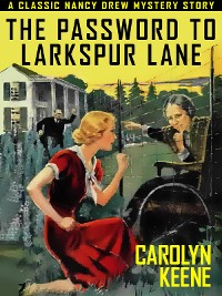 Cover The Password to Larkspur Lane