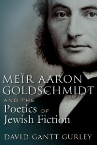 Cover Meïr Aaron Goldschmidt and the Poetics of Jewish Fiction