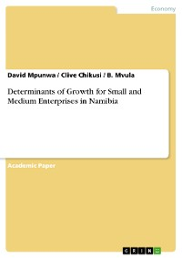 Cover Determinants of Growth for Small and Medium Enterprises in Namibia