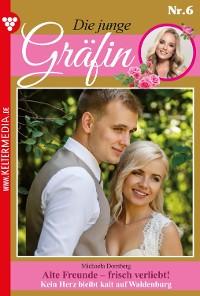 Cover Die junge Gräfin 6 – Adelsroman