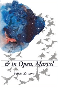 Cover & in Open, Marvel